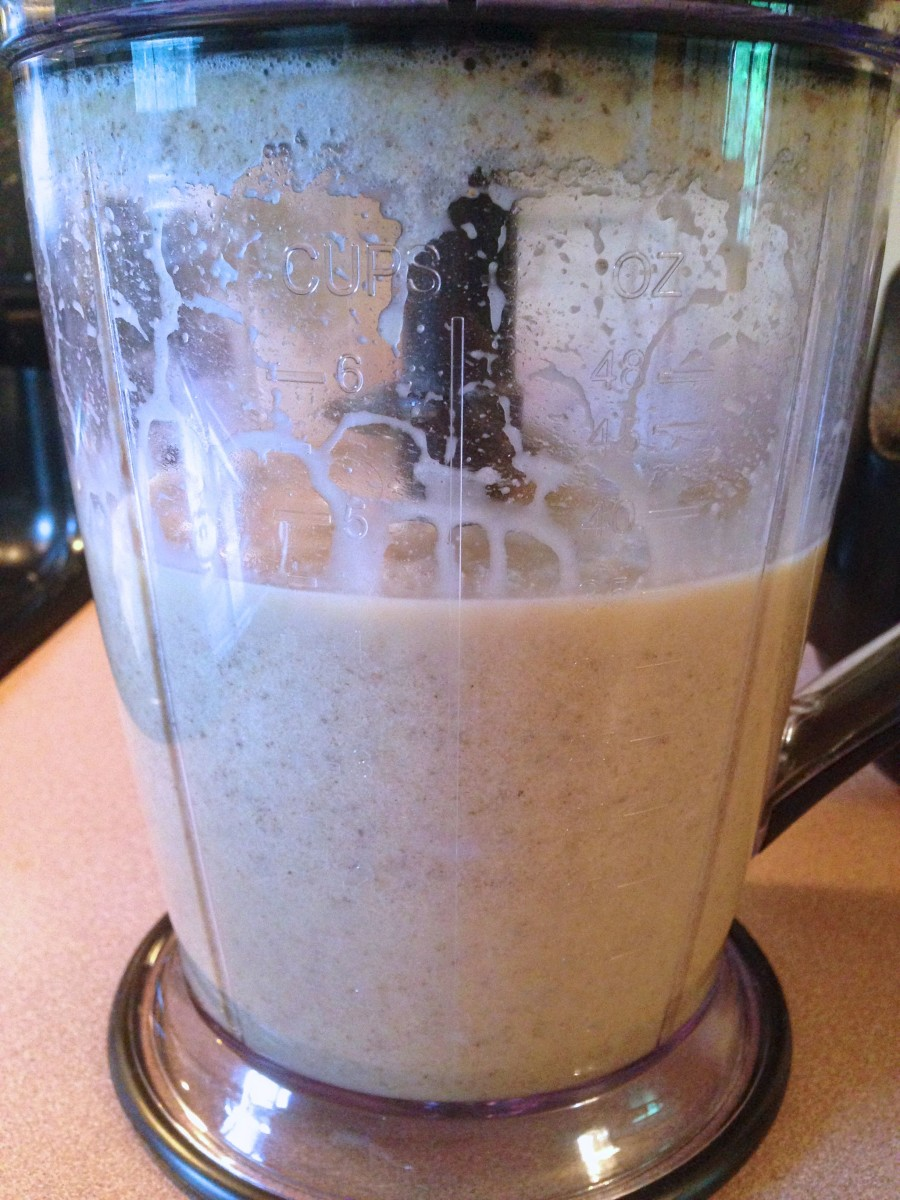 This is before I added extra water. It's about the consistency of a smoothie here.